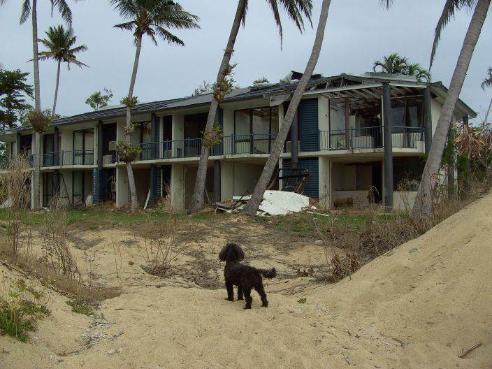 Dunk Island Destroyed By Cyclone Yasi: Dunk Island, Showing The Damage By Cyclone Yasi Last Year